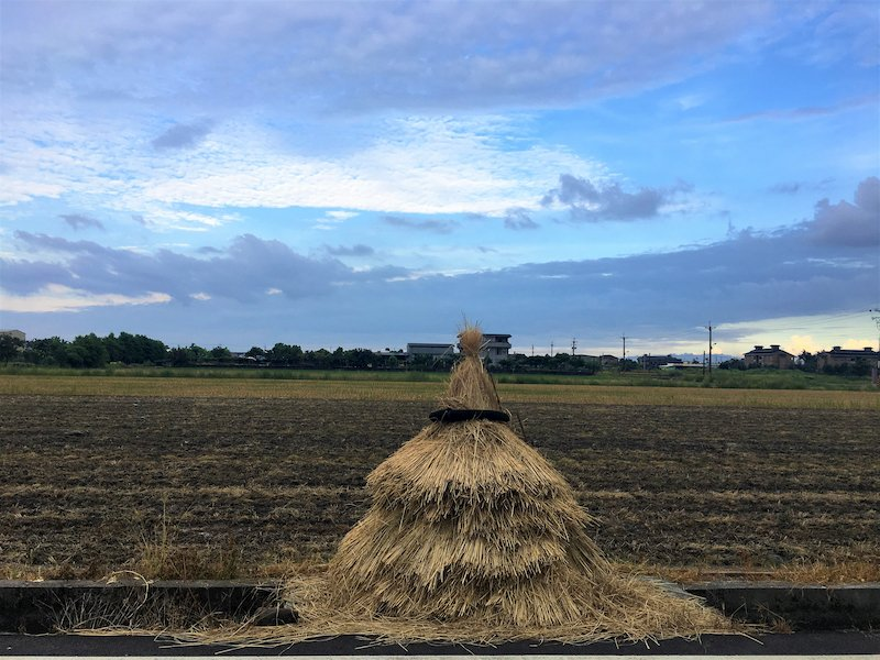 收成後的稻草堆