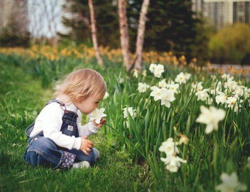 香到很臭!別再忍受清潔用品的刺鼻香味,讓植物純露拯救你吧!