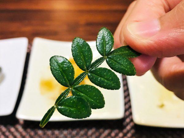 台東素食蔬食_夏安居_胡椒木毛苔豆腐