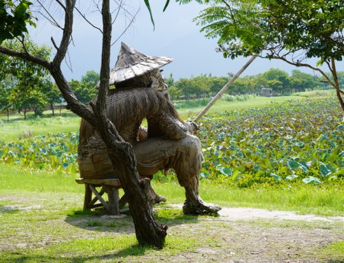 台東|池上#3 大坡池畔享受歲月靜好的佝僂老人