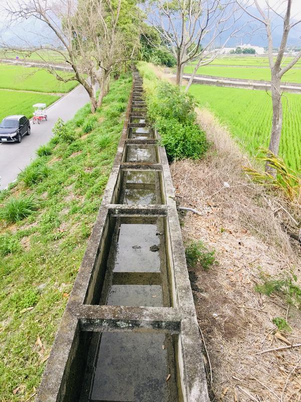 台東池上浮圳