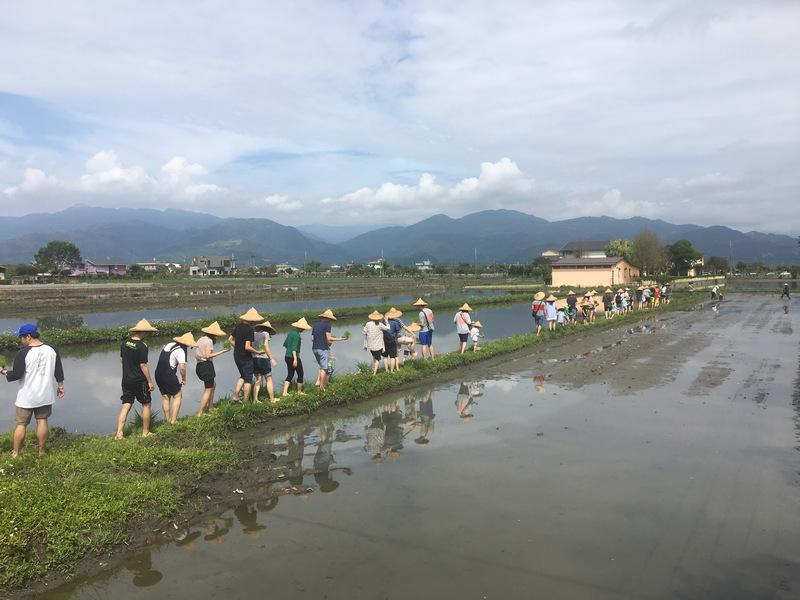 宜蘭三星行健有機村 插秧農事體驗