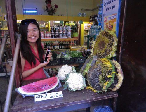 一趟波蘭旅行+豐葵瓜子,顛覆我對嗑瓜子的印象!