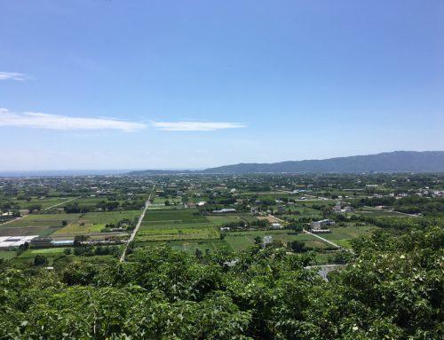 花蓮|吉安,一覽洄瀾市景與太平洋-楓林步道